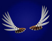 Knifes mögen Flügel Lizenzfreie Stockfotos