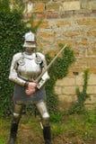 The knight Stock Photos