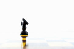Knight. Chess knight and its reflection on the chess board Royalty Free Stock Photos
