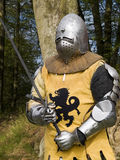 Knight. Waitng for an enemy in the forest Stock Photography