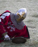 Knight Stock Photography