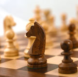 KNIGHT ON THE CHESS BOARD Stock Image