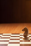 Knight chess Stock Photos