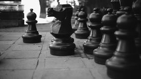 The Knight of a Chess game with other big chess pieces around stock footage
