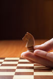 Knight chess Stock Image