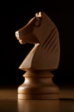 Knight chess. Photography of white knight chess on wood table Stock Photography