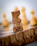 Knight chess piece. Old wooden chess figurine of black knight surrounded with white figures Royalty Free Stock Images