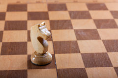 Knight chess piece on a Board Stock Image
