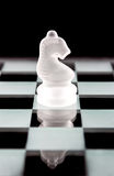 Knight chess piece over black Stock Photos