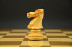 Knight on a chessboard Royalty Free Stock Photo