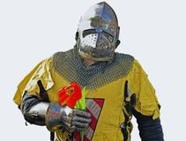 Knight with flower. Knight performer holding flower, isolated figure stock photos