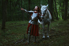 Knight in forest. Knight with white horse wolking in the forest Stock Photos