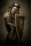 Knight in full armour Royalty Free Stock Image
