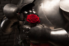 Knight giving a rose to lady. Closeup portrait of medieval knight in armor holding red rose on dark background, romance concept Royalty Free Stock Photo