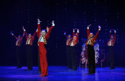 Knight of glory-Spanish flamenco-the Austria's world Dance Royalty Free Stock Image