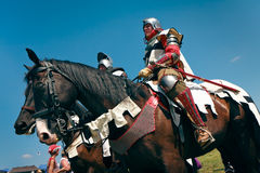 Knight and his horse stock image