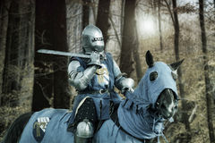 Knight on the horse Royalty Free Stock Photography