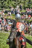 Knight on horse Stock Image