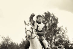 Knight on a horse, sepia Stock Images
