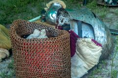 Knight o capacete do ` s na terra em um dia ensolarado imagens de stock