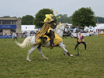 Knight practising jousting Royalty Free Stock Image