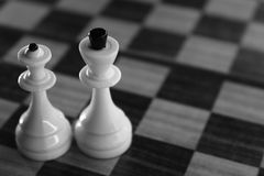 Knight and queen chess figures on chessboard monochrome, black and white. Competition and strategy concept. Stock Photography