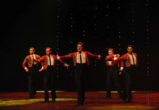 Knight-Spanish flamenco-the Austria's world Dance Stock Photography