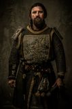 Knight without sword. Medieval knight without a weapon Royalty Free Stock Photos