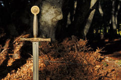 Knight sword in forest. Decorated knight sword inside autumn forest Royalty Free Stock Photography