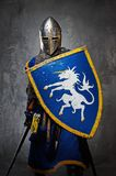 Knight with a sword and shield. Medieval knight on grey background stock photo