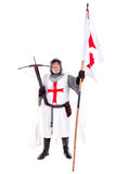 Knight Templar Stock Images