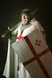 Knight Templar Stock Image