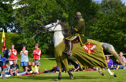 Knight tournament Stock Photography