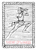 Knight of wands. The tarot card. Stock Images