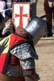 Knighted Fotos de archivo