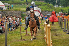 Knightly duel Royalty Free Stock Photo