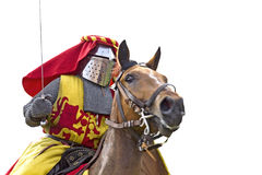 Knightly tournament. Royalty Free Stock Photos