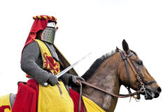 Knightly tournament. Royalty Free Stock Image