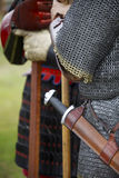 Knights Stock Images