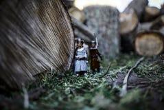 knights Imagens de Stock