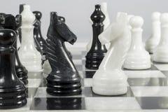 Knights cara a cara en un tablero de ajedrez de mármol Fotografía de archivo libre de regalías
