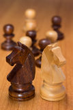 Knights chess Stock Photography