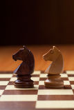 Knights chess. Closeup of chess knights pieces over chessboard Stock Photography