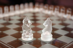 Knights on chessboard. Two different kinds of knights on wooden chessboard Stock Image
