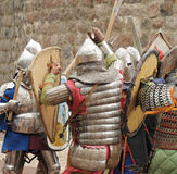 Knights in the field of fight Stock Image