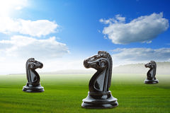 Knights on the grass Royalty Free Stock Photography