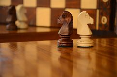 Knights Match. Two knights from a chess board Royalty Free Stock Photo