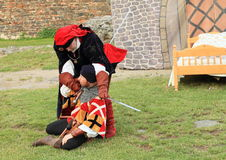 Knights - noblemen fighting Stock Photos