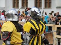 Knights portrait Royalty Free Stock Photo