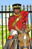 Königliche Abdeckung auf dem Pferdenschützen der Palast Lizenzfreies Stockfoto